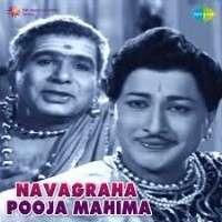 Navagraha Puja Mahima