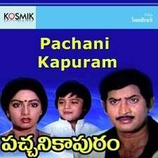 Pacchani Kapuram