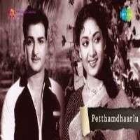 Petthamdhaarlu