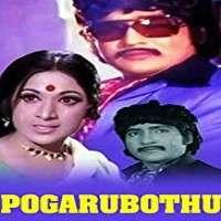 Pogarubothu