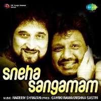 Sneha Sangamam