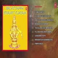 Sree Ayyappa Swamy Vijayam