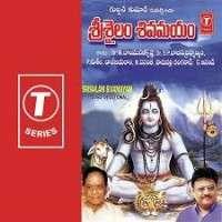 Srisailam Sivamayam